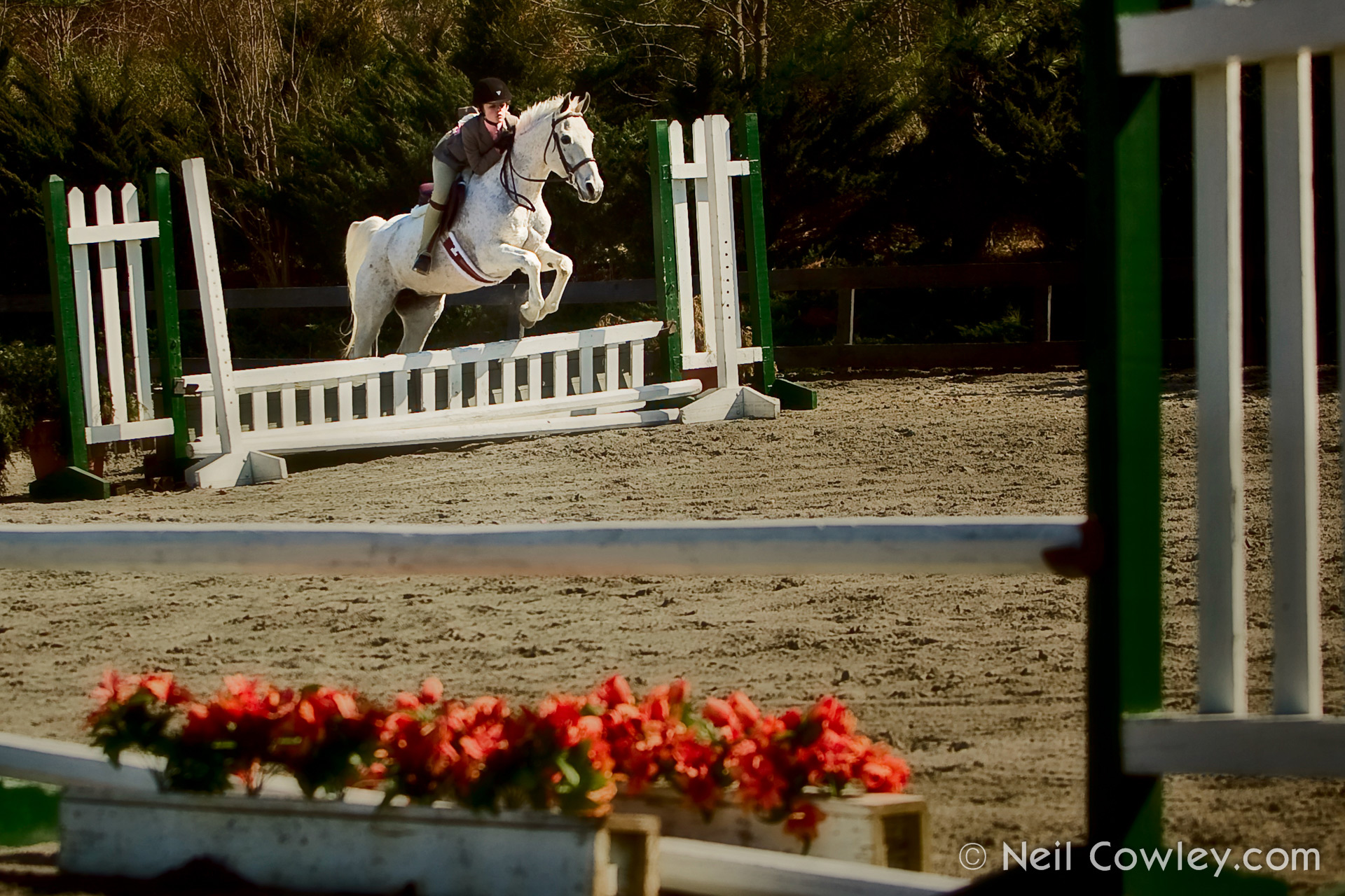 peoria-commercial-photographer-0123