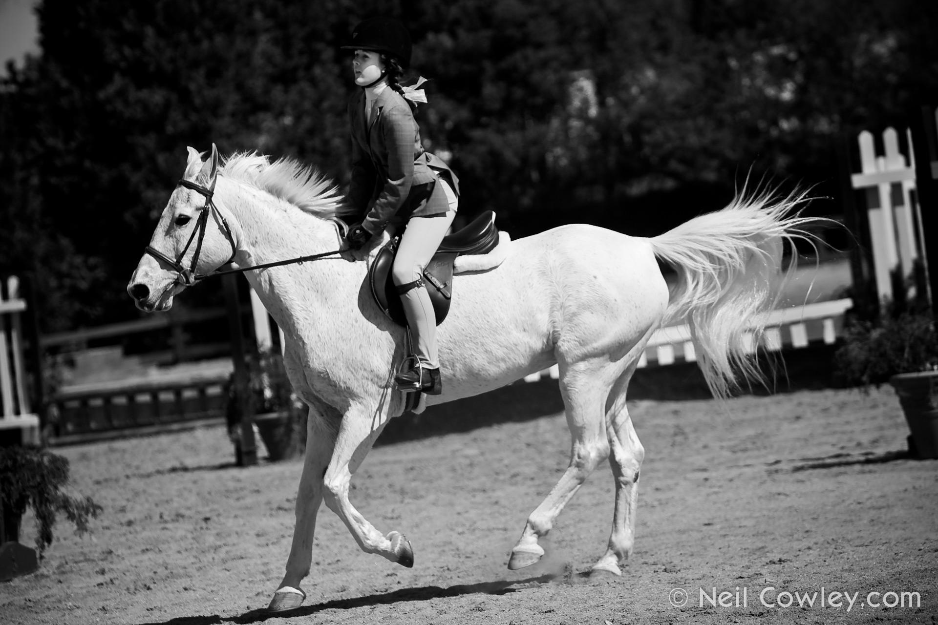 peoria-commercial-photographer-0126